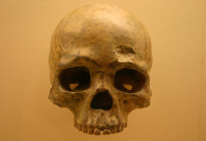 Liujiang cave skull b. Homo Sapiens 68000 Years Old